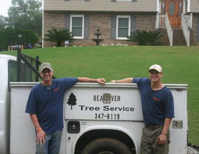 Our goal is to be the most trusted tree experts