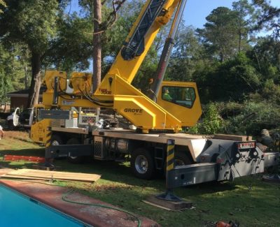Tree Removal Crane 1