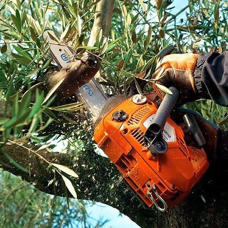 chainsaw2